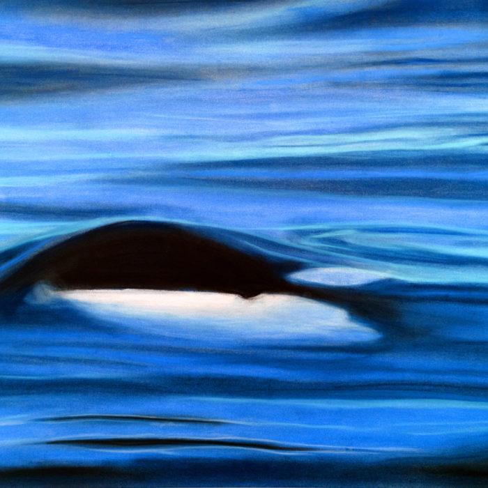 Orca Waters Print
